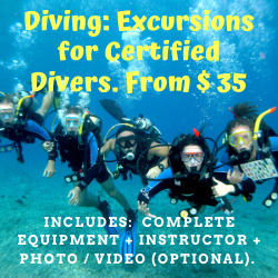 Buceo: Excursiones para Buzos Certificados. Desde $ 35 P/P Para grupos de 4 o más. (Diving: Excursions for Certified Divers. From $ 35 P / P (For groups of 4 or more))