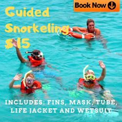 Snorkeling Guiado $ 15 P/P Incluye: Aletas, mascara, tubo, chaleco salvavidas y wetsuit (Guided Snorkeling $ 15 P / P Includes: Fins, mask, tube, life jacket and wetsuit)